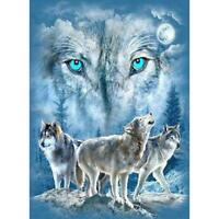 5D DIY Full Drill Square Diamond Painting Snow Wolf Cross Stitch Mosaic Kit
