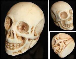 Figurine Tête de Mort - Squelette