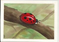 Hand Painted Original LadyBug Art by Lynn Seymour Watercolor on Watercolor paper