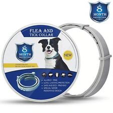 Adjustable Anti Flea Tick Pet Collar Dog Puppy Up To 8 Months Protection UK