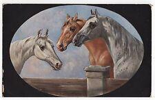 Famous Horses Series Horse Head Study Tuck Old  Art Postcard circa 1920