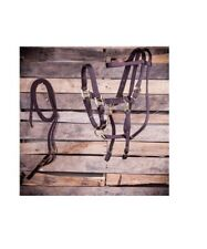 Bridle and Halter Combo with Reins For Horses Polypropylene Brown