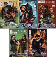 CASTLE: A CALM BEFORE STORM (5) Issue Comic SET #1 2 3 4 5 1st print MARVEL ABC
