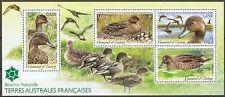TAAF 2013 Mi.No. 793 - 796 (Block 33) Fr. Antarktis birds s/sh MNH**