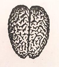 Rare Vintage Rubber Stamp Human Brain Anatomy Steampunk Antique Science Health