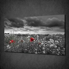 RED POPPIES FLOWERS FIELD STORMY SKY CANVAS WALL ART PRINT PICTURE READY TO HANG