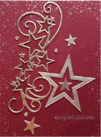 Stanzschablone Stern Liane Hochzeit Weihnachten Oster Geburtstag Karte Album DIY