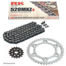 RK XSOZ Gold X-Ring Kettensatz Suzuki GSX-R 1100 L Bj 90-92