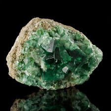 "2.9"" BlueGreen Gemmy ROGERLY FLUORITE Crystals PenetratingTwins England for sale"