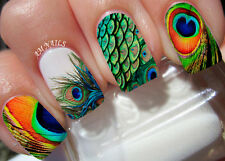 Peacock Feather Nail Art Stickers Transfers Decals Set of 22