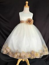 Ivory Rose Petal Dress S M L XL 2 4 6 8 10 12 14 Flower Girl Christmas Fall #24
