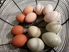 """12 Fresh Hatching Eggs - Barnyard """"Common & Rare Breeds"""" mix. Multiple rooster"""