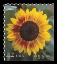 4347 Sunflower 42c Self Adhesive First Class Stamp From 2008 MNH - Buy Now
