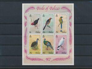 LN90413 Belize 1977 animals fauna flora birds good sheet MNH