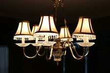 6 Light Polished Brass Chandelier with Light Shades