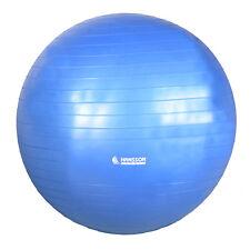 Gymnastikball Gym Ball Sitzball Fitnessball 60cm Blau Anti Burst inkl. Handpumpe