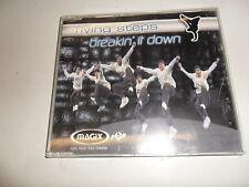 Cd   Flying Steps  – Breakin' It Down