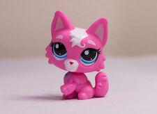Littlest Pet Shop LPS #3561 Pink Kitty Cat