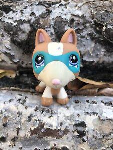💖🐶Littlest Pet Shop AUTHENTIC Superhero Bulldog Terrier PROTOTYPE Dog LPS