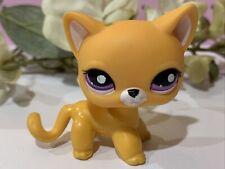 Littlest Pet Shop LPS Authentic 2433 Orange White Blind Bag Shorthair Cat Blem