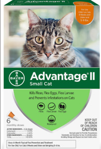 Bayer Advantage II Flea & Spot Treatment for Cats, 5-9 lb ( 6 pack )