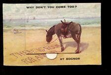 Sussex BOGNOR REGIS Novelty Flap Donkey Used 1922 PPC