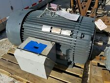 Reliance Electric Motor Mn7044 300hp