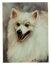 New American Eskimo Head Study Notecards 12 Note Cards By Ruth Maystead Made Usa