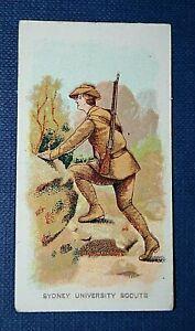 SYDNEY UNIVERSITY SCOUTS   Sydney University Regiment  Original 1910 Small Card