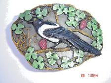 Magpie Koppelschloss der Rabenvögel Vogelbeobachtung.