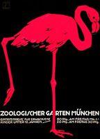 "Vintage Flamingo German Zoo Poster CANVAS PRINT Berlin poster 24""X16"""