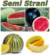 40 Seeds WATERMELON & MELON: GIANT AMERICAN, SUGAR BABY, YELLOW and CANARY MELON