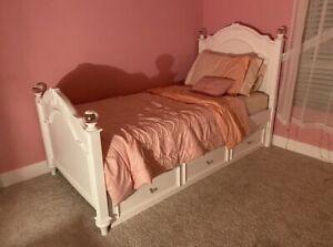 $450 princess set