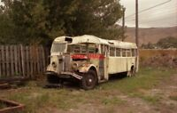 PHOTO  NEW ZEALAND CHRISTCHURCH FERRYMEAD MUSEUM OLD BUS