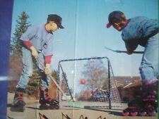 Streethockey Tor 84x71 cm beweglich Hockey Street Kleintor