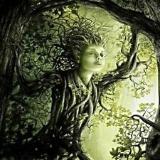 Delightful Dryad Introduces Hidden Beauty, Secret Worlds & Fairy Friends haunted