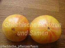 Pineapple Tomate ananas-tomaten Red/Orange Beef Tomato 10 fresh seeds Balcony