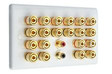 Slimline White 10.2 Speaker Wall Plate Gold 20 Binding Posts + 2 RCA'S