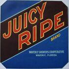JUICY RIPE Vintage Waverly Florida Citrus Crate Label, ***AN ORIGINAL LABEL***