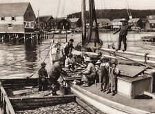 1925 Vintage CANADA ~ Seal Harbor Fishing Boats Grand Manan Island New Brunswick