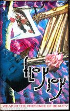 CAS - Floy Joy - Weak In The Presence Of Beauty (SPANISH EDIT.1985) MINT SEALED
