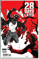 28 DAYS LATER 11, NM, Zombie, Horror, Walking  Dead, 1st, 2009, more in store, A