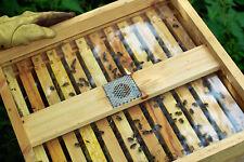 1 National Bee Hive Cedar wood timber See Through Crown board.