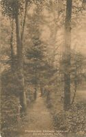 ITHACA NY – Forest Home Walk - 1921