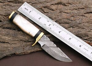 Custom Hand Forged Damascus Steel HUNTING Knife W/ Resin & Brass Guard Handle