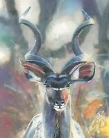 PRINT Kudu Antelope Mixed Watercolor Painting Animal Wildlife Original Art 14""