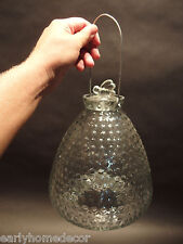 Large Antique Vintage Style Clear Glass Fly Wasp Bee Hive Bottle Trap