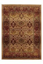 NEXT Rugs & Carpets