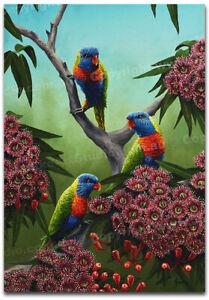 Rainbow Lorikeet BIRD ANIMAL Gift Fine Art Canvas Print - Australian Made