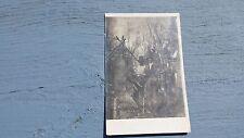 Early 1900's Vintage Postcard Deer Buck Hunting Hunters Rifles Shotguns RPPC